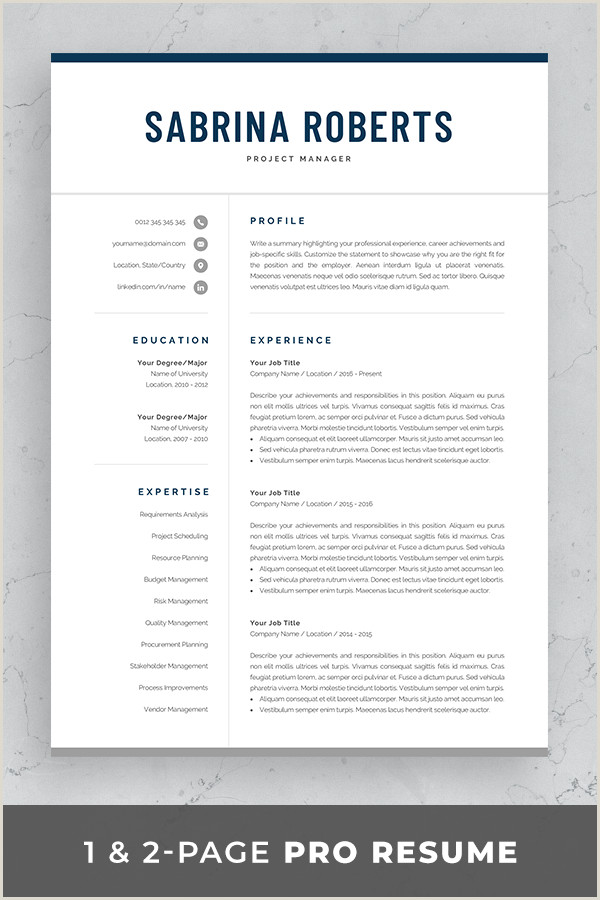 Professional Cv format In Word for Accountant Resume Template Professional Resume Cv Template