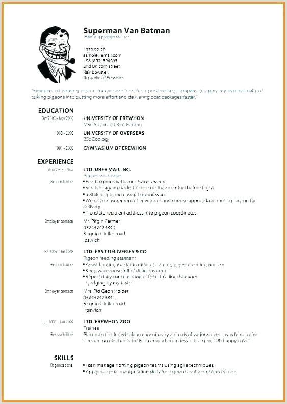 Graduate Cv Template Word Best Rn Resume Template Gratuitement