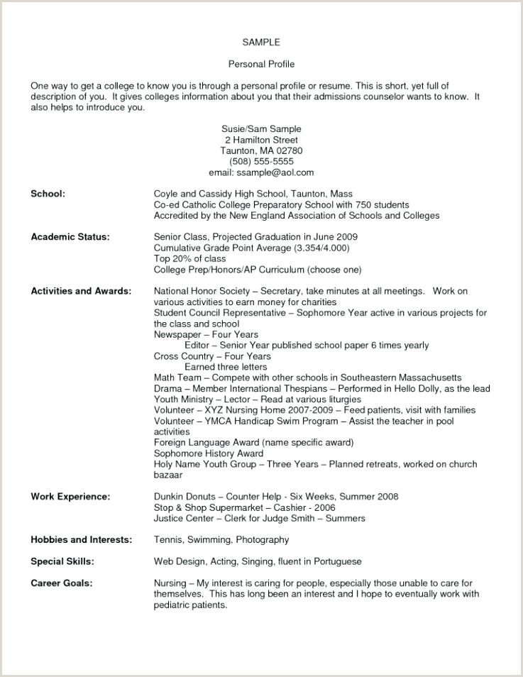 Professional Cv format Latex New Cv Template
