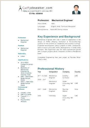 Professional Cv format Mechanical Engineer Mechanical Engineer E Template Doc Engineering format