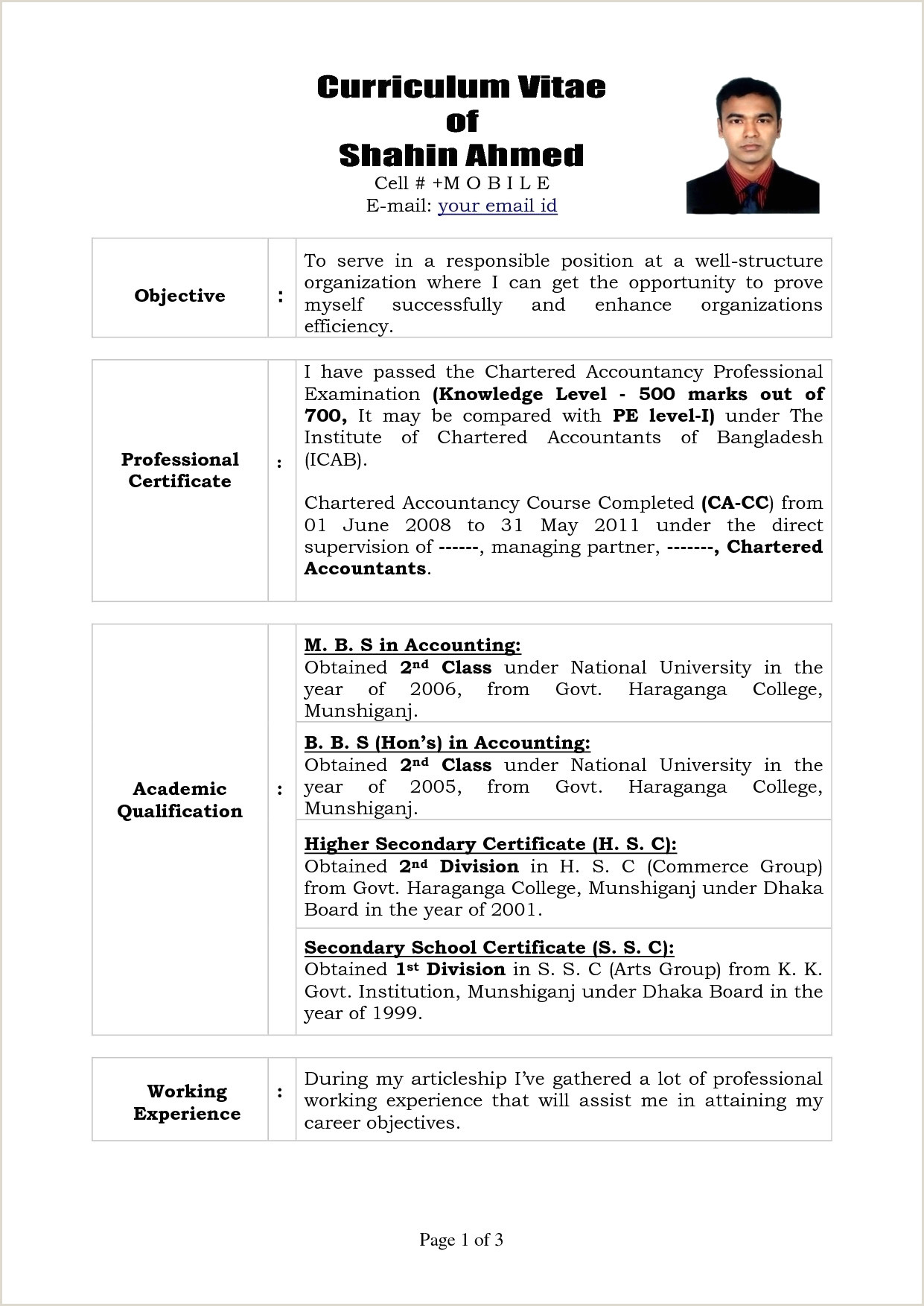 Professional Cv Format Of An Accountant Telecharger Modele De Cv Exemple 30 Sample Cv Examples Iulitte