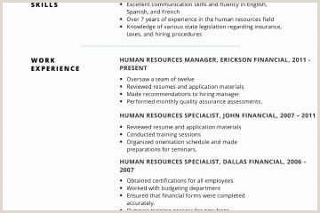 Professional Cv format Pakistani Bartending Resume Examples Free Bartending Resume Example