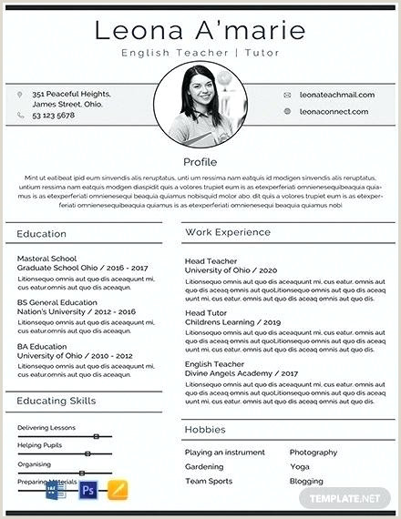 Professional Cv format Pdf 2019 Cv English Template