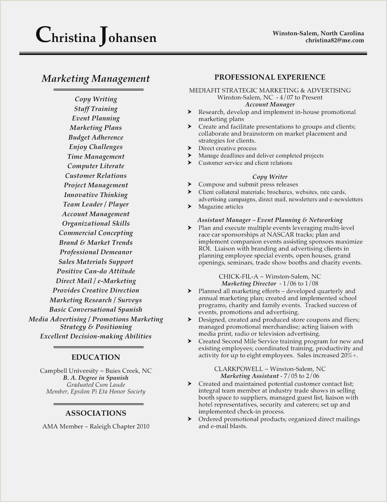 Professional Cv format Sales Marketing Download 54 Marketing Strategy Template Sample
