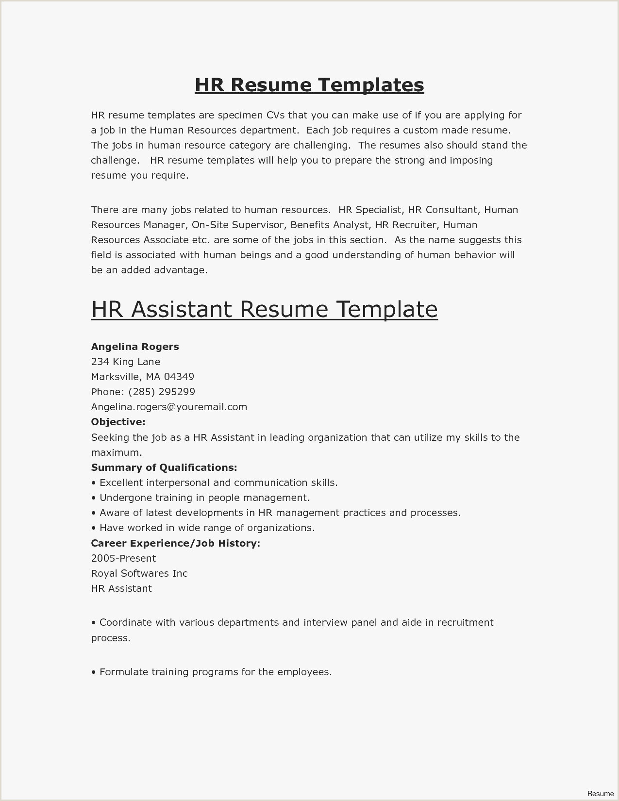 Beautiful Basic Resume format Examples – 50ger