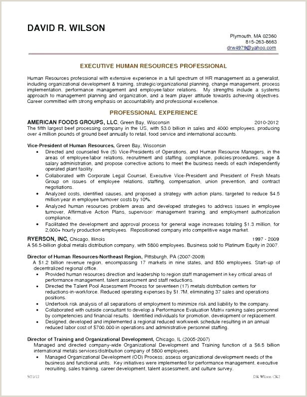 Professional Cv format software Engineer software Developer Resume Sample – Cocinacolibri