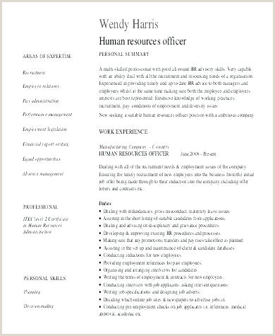 How To Write A Professional Templates Examples Cv Writing