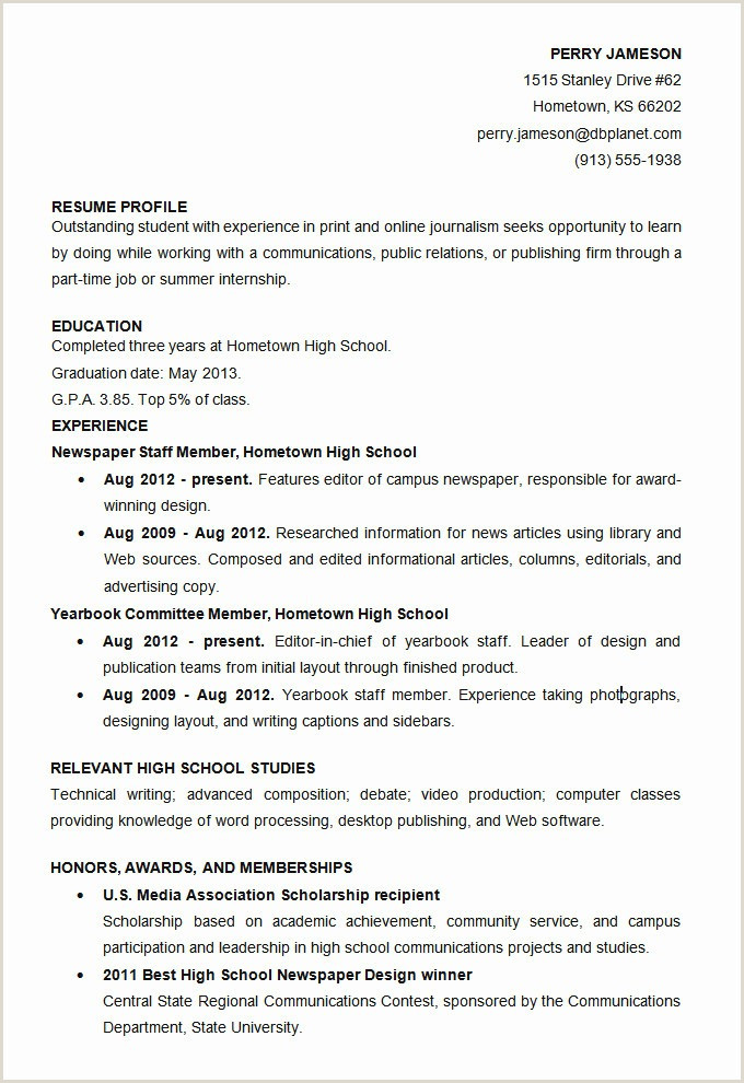 Professional Cv format Template 35 Best Cv Templates Word