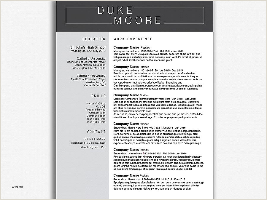 Professional Cv format Word 2017 Best Resume Template 2017 Free Resume Design