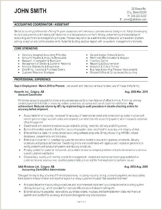 Professional Cv format Word Document Cv Template