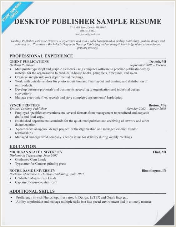 Professional Cv Profile Examples Example Resume Profile New Profile Writing Sample Resume