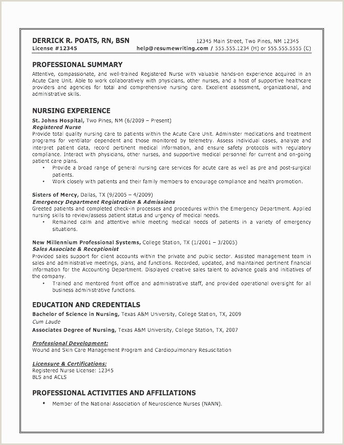Resumes Professional Summary Examples Professional Period