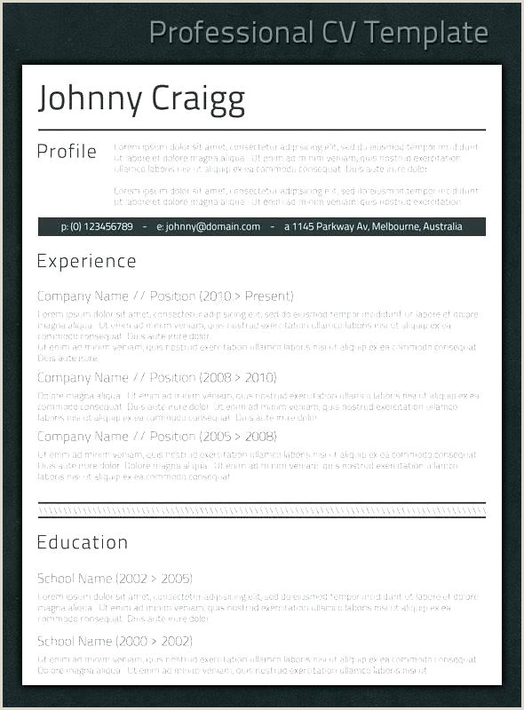Professional Cv Samples Doc It Professional Cv Template