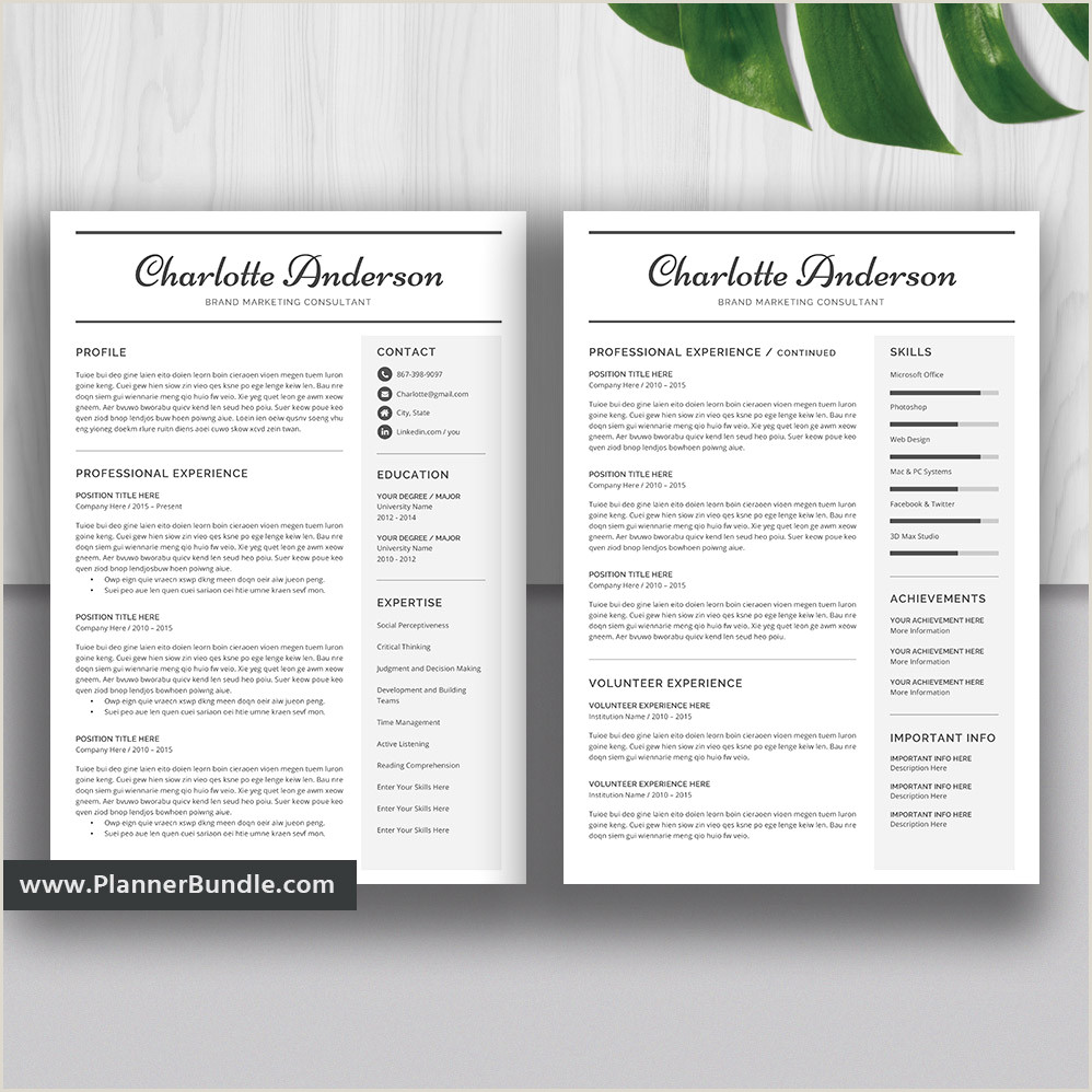 Editable Resume Template Design Job CV Template Word 2019 College Students Interns Fresh Graduates Professionals Charlotte
