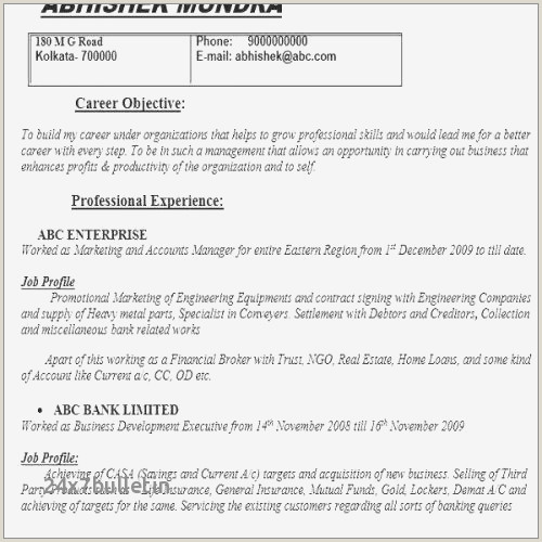 General Manager Resume Sample Examples Business Credit