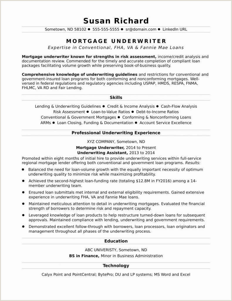Photo of Professional Cv Writing Examples