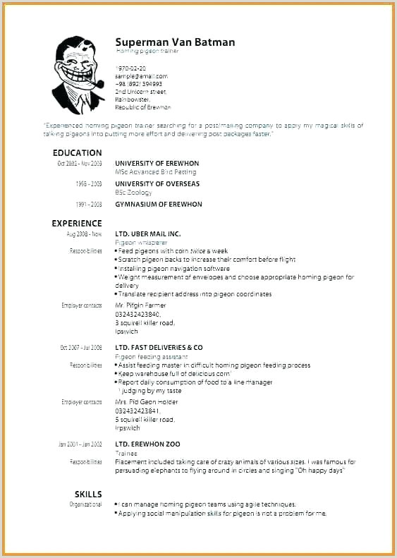 Professional Format Of Cv Sample Professional Resume Template Cv Format Free Download