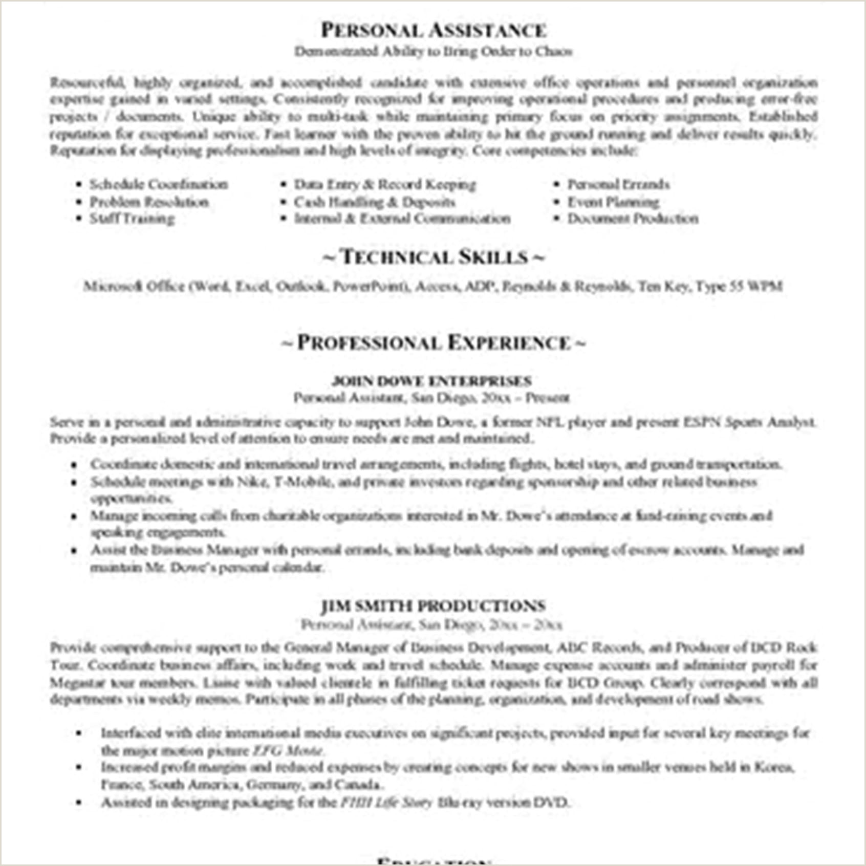 Professional format Of Writing Cv Writingume Profile Cv Personal Examples Professional for