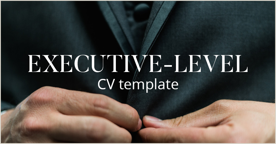 CV template A plete guide to writing an Executive level CV