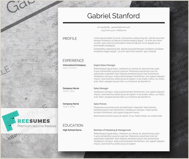 Free Classic Conservative Professional CV Resume Template in