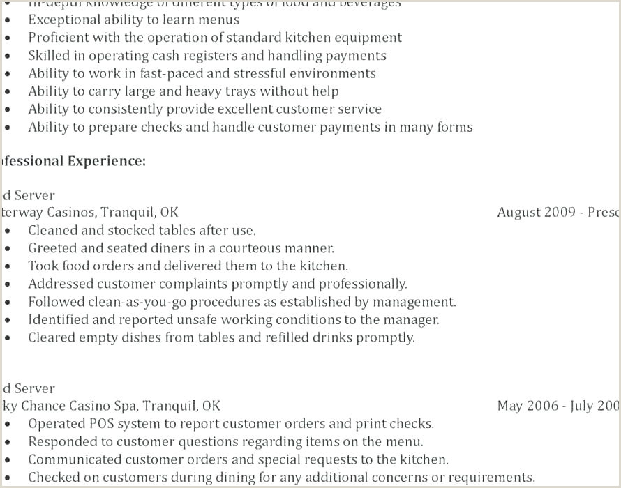 Professional Summary Cv Examples Uk Waiter Cv Template
