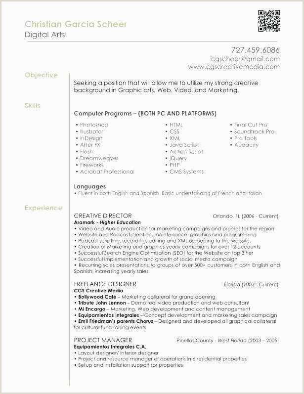Sample Programmer Resume Sample 27 Amazing Sas Programmer