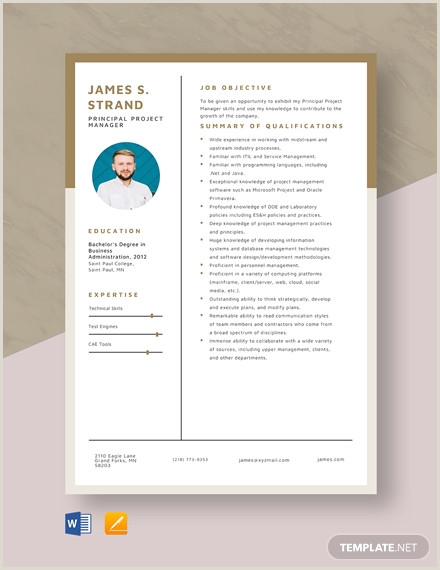 Project Manager Cv Beauty Brand Manager Resume