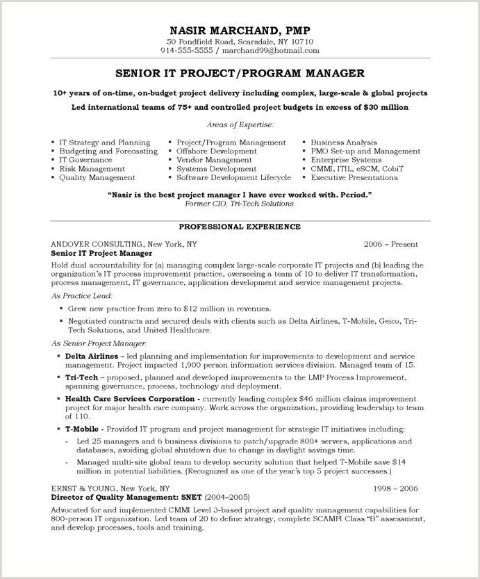 Project Manager Resume Template – Salumguilher