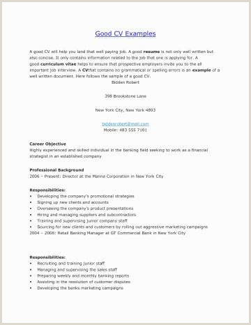 Promotional Resume Example Image Pour Cv Meilleur Cv Versus Resume Awesome Nanny