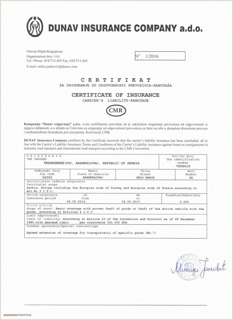 Insurance Resume Examples New Certificate Insurance Template