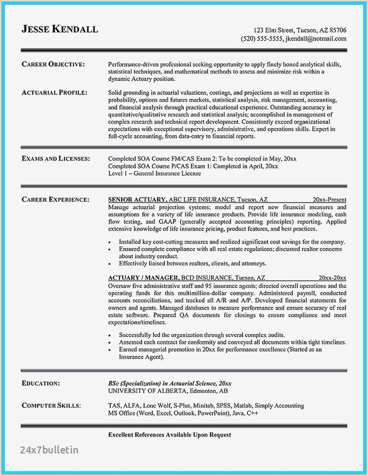 Beautiful Real Estate Experience Resume