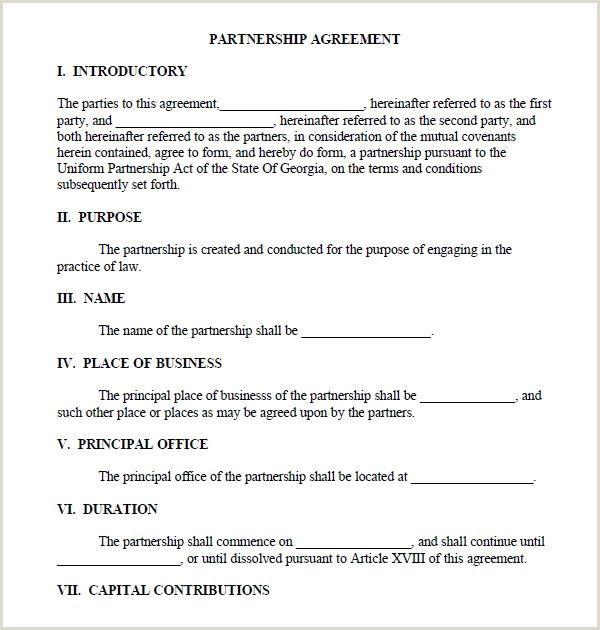 Real Estate Development Joint Venture Agreement Sample Printable Sample Partnership Agreement Sample form