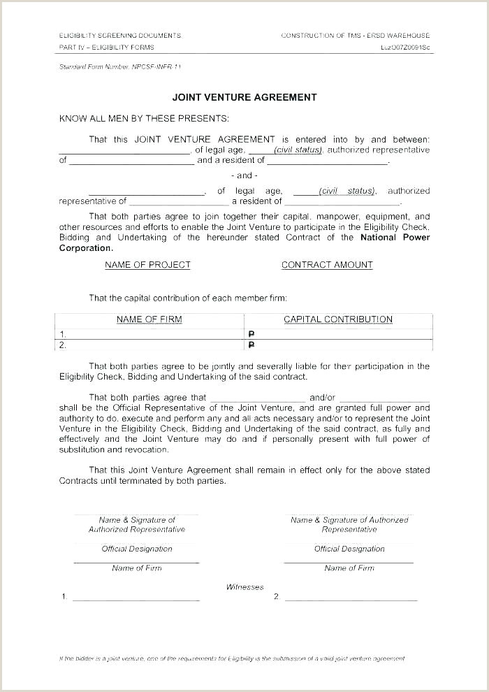 Real Estate Joint Venture Agreement Template Partnership