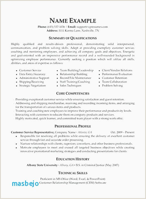 Elegant Us It Recruiter Resume Sample