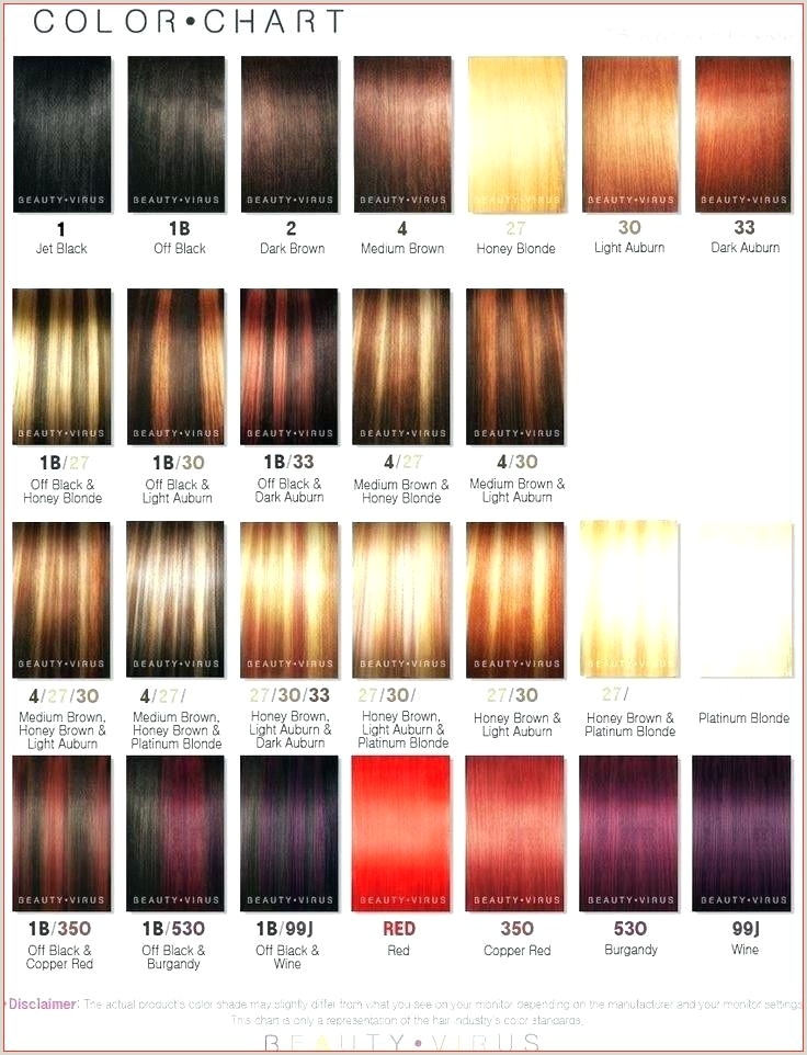 Hair Colors Chart Chestnut Top Result Shades Gloss Best