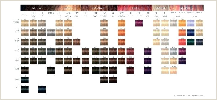Redken Semi Permanent Hair Color Chart Hair Color Chart Shades Lovely Gels Redken Pdf Cover Fusion