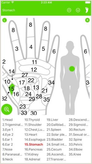 Reflexology Hand Map Chart Reflexology Chart Foot & Hand On the App Store