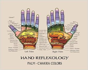 Reflexology Hand Map Chart Reflexology Chart