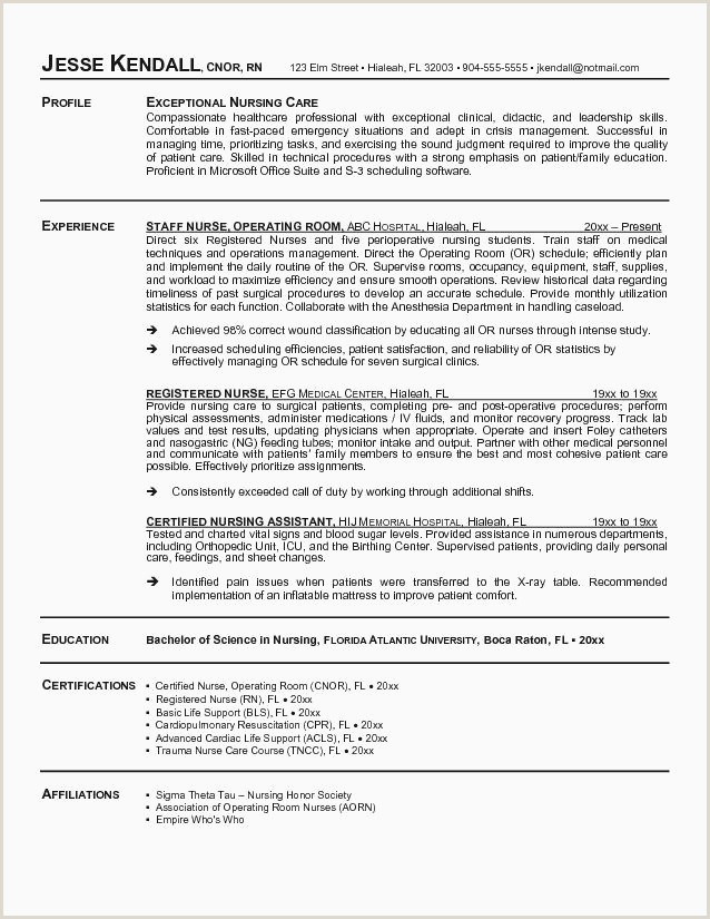 Beautiful Professional Summary for Nursing Resume
