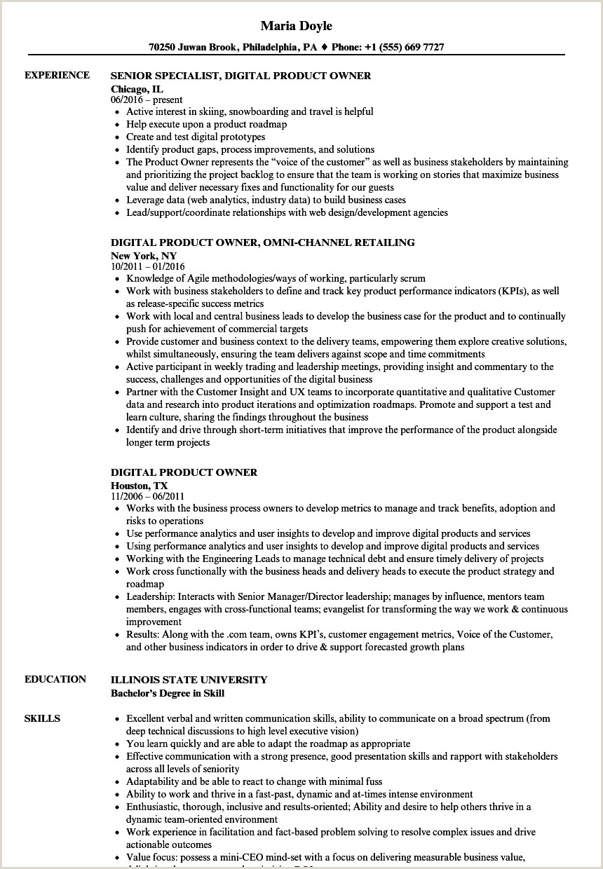 plex Product Owner Resume – Philaurbansolutions