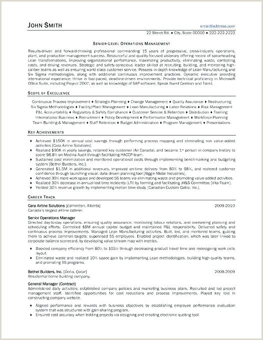 Small Business Owner Resume Examples Sample Small Business