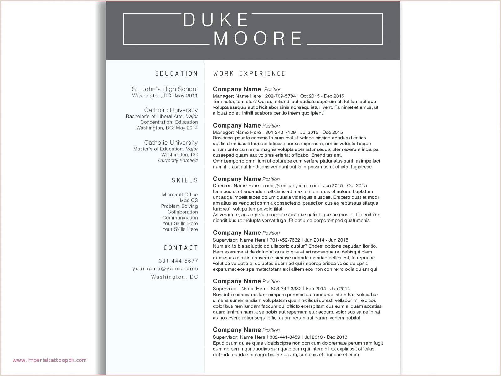 New Functional Resume Example Australia
