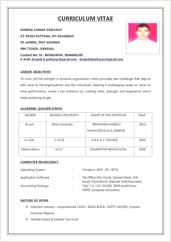 Example Carpenter Resume Template Cv – modernify