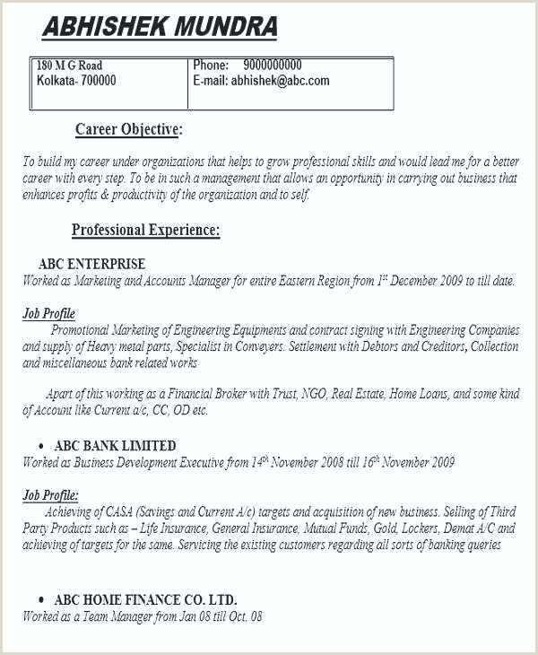 Finance Cv Template Financial Resume Accounting Amazing
