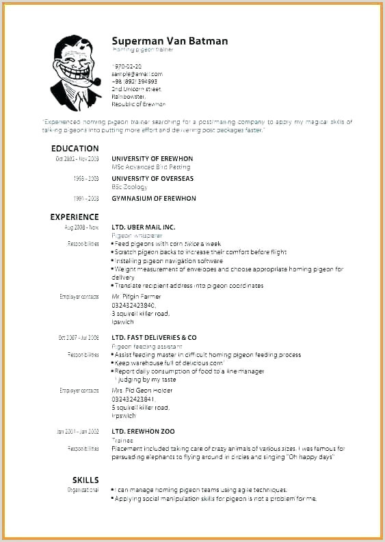 Restaurant Resume Skills Awesome Restaurant Server Resume