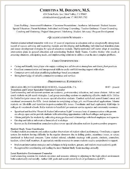 Resume for Mental Health Counselor Lovely Mental Health Resume Objective Examples Resume Design