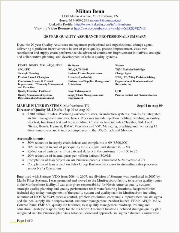 Resume Format Download In Ms Word For Fresher Mechanical Engineer The Best Resume Format Professional Resume Format For