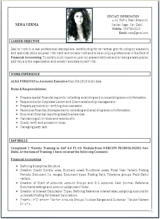 best resume format ever – joefitnessstore