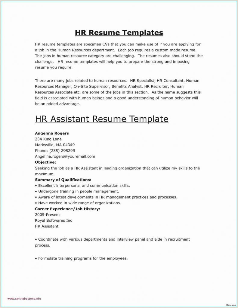 Sample Resume For Bank Jobs Pdf New Resume Format For