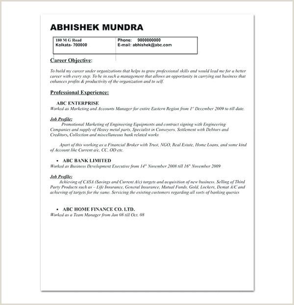 Resume format for Bank Job Pdf Management Executive Job Description